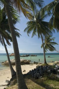 Strand Koh Phangan Thailand